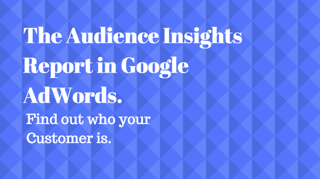 audience-insights-report-google-adwords